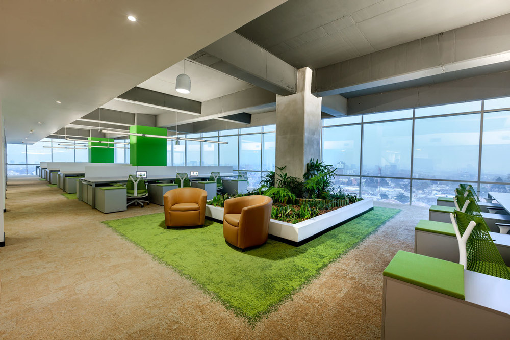 indoor-office-green-nabers