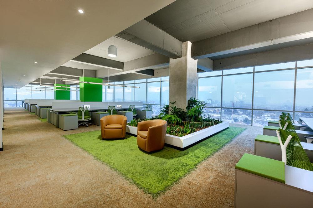 indoor-office-green-nabers